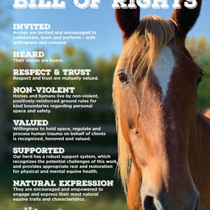 Horse Bill of Rights